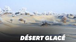 Le givre transforme ce désert chinois en un paysage