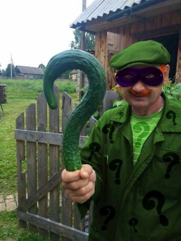 Cet homme qui pose avec un drôle de concombre vaut le