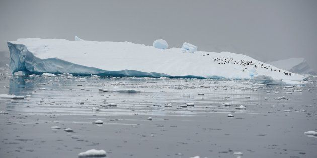 Antarctica's melt quickens, risks meters of sea level rise: study.