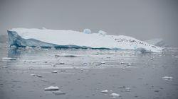 L'Antarctique fond six fois plus vite qu'il y a 40
