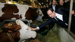 Au Salon de l'Agriculture 2018, Macron a battu le record de