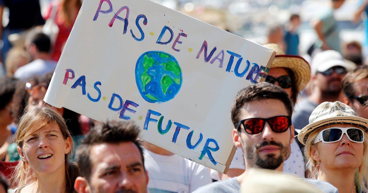 Environnement: Ecosia permet à ses employés de manifester plutôt que travailler