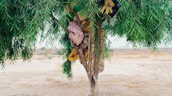 Ces photos de Ron Amir racontent le parcours des
