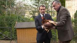 Macron accueille deux nouvelles habitantes à