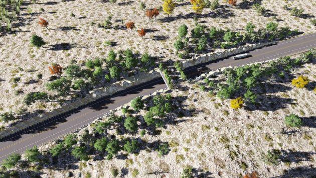 Au Mexique, des petits ponts sur les autoroutes pour sauver les animaux