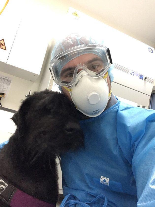 Io, charmante Schnauzer géant suivie au service d'oncologie pour la prise en charge d'un lymphome de haut-grade, pose ici au cours de sa dernière séance de chimiothérapie.