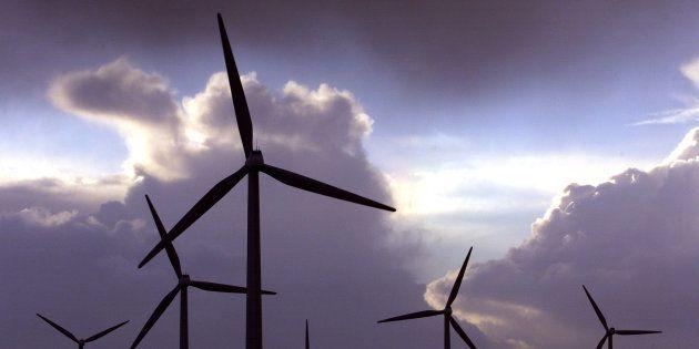 Le gouvernement ment aux Français, l'énergie éolienne pollue et nous coûte trop