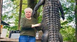 Après 3 ans de traque, cette mamie a eu sa vengeance sur un alligator qui avait mangé son