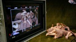 Voici le nouveau clip d'Angèle, tourné au siège du