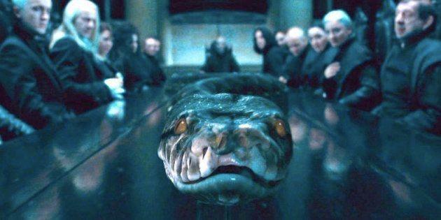 Le serpent de Voldemort était une sorcière (et on