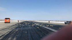 En Russie, un avion perd trois tonnes de lingots de