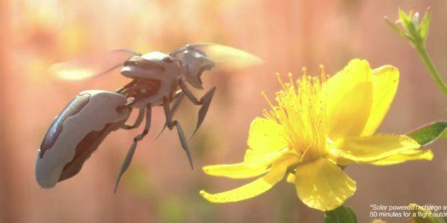 Walmart réfléchit à des abeilles robots comme dans Black
