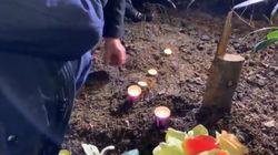 Un arbre planté à la mémoire d'Ilan Halimi retrouvé scié deux jours avant l'anniversaire de sa