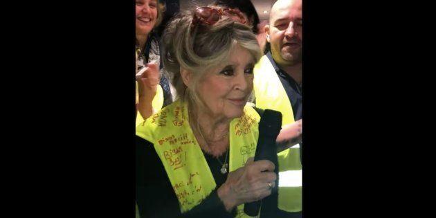 Brigitte Bardot fait une visite surprise auprès des gilets jaunes à Saint-Aygulf, près de