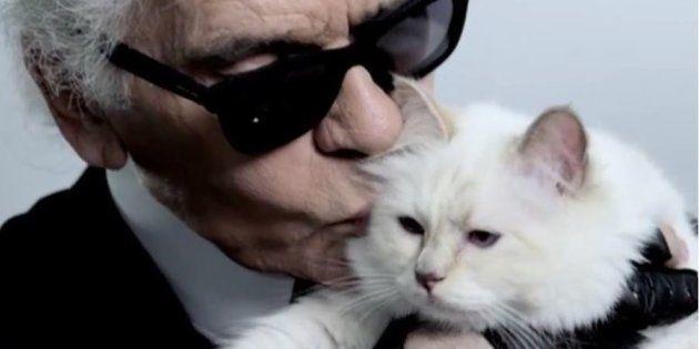 Karl Lagerfeld et son chat Choupette, héritière du créateur mort le 19 février