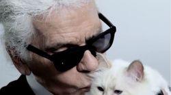 Karl Lagerfeld avait désigné son chat Choupette comme