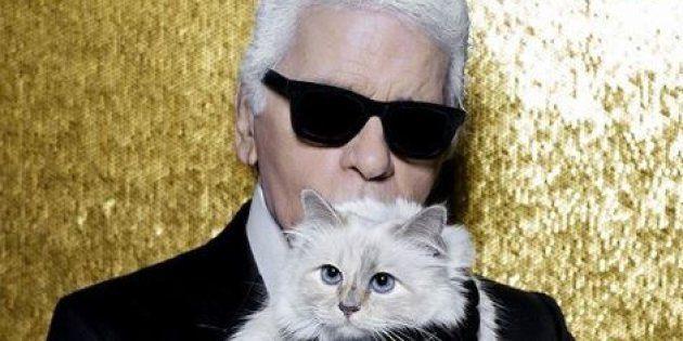La chatte de Karl Lagerfeld Choupette a rendu hommage à son maître sur