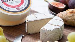 Un fromage vegan pourrait-il remplacer un fromage classique? On a