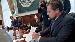 Leonardo DiCaprio s'engage pour sauver le plus petit cétacé au monde en voie