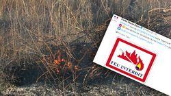 Qu'est-ce que l'écobuage, la pratique à l'origine de certains incendies en