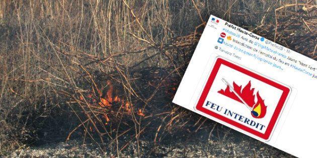 Plus de 1300 hectares de végétation ont été ravagés par des incendies en moins de 48h en Corse. L'écobuage...