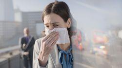 Allergies au pollen et particules fines, le cocktail