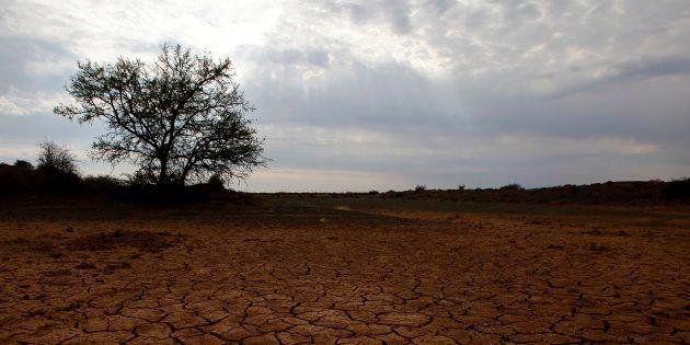 Si les émissions de gaz à effet de serre dépassent un certain seuil, le climat pourrait s'emballer à...