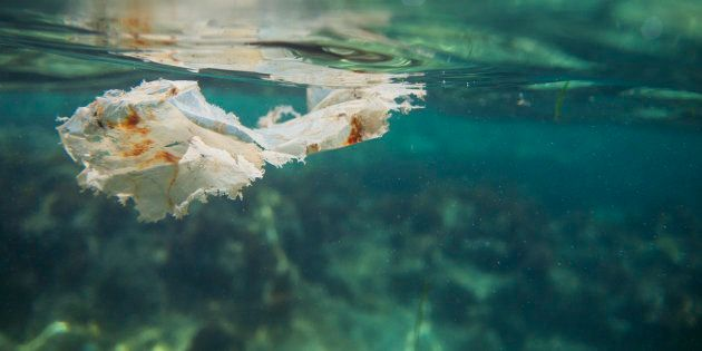 Le plastique est souvent présent à la surface, mais quand il se décompose, il tombe au fond de l'océan...