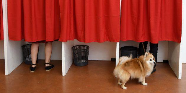 EN DIRECT. Législatives 2017: le premier tour de l'élection avec le meilleur (et le pire) du