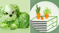 Les enfants n'auront plus de mal à manger des légumes avec ces
