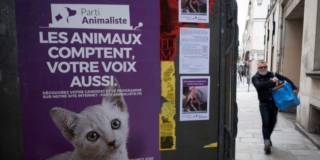 En dépassant le score symbolique de 1% dans plus de 50 circonscriptions, le Parti Animaliste va toucher...