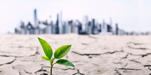 Même un réchauffement climatique limité à 2° aura une incidence