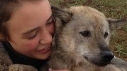 Après 10 jours de mobilisation, Marlin, la chienne perdue à l'aéroport de Roissy, a été