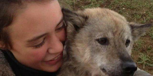 Amelia, jeune étudiante britannique de 22 ans, a enfin retrouvé Marlin, petite chienne rescapée d'un bourreau viêtnamien.
