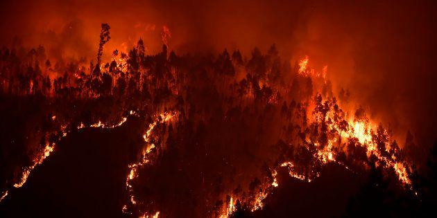 Un Français parmi les victimes de l'incendie au