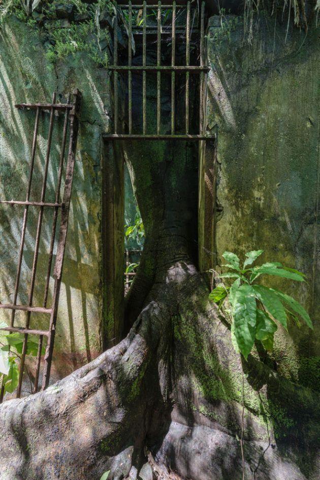 Sur les traces de Papillon dans le bagne de l'île Saint-Joseph en