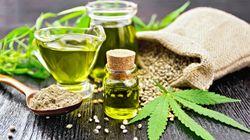 Qui pourra prescrire du cannabis thérapeutique, à qui et