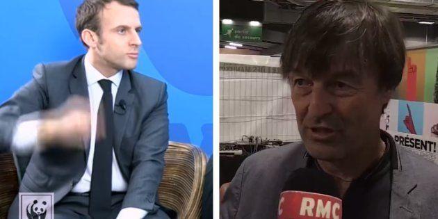 Néonicotinoïdes: ces deux vidéos de Macron et Hulot qui mettent le gouvernement dans