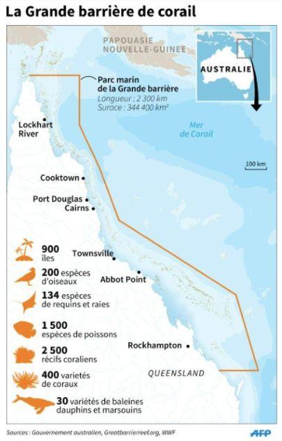 La Grande barrière de corail, joyau du patrimoine mondial, a subi une hécatombe