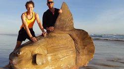 超巨大なマンボウがオーストラリアの国立公園で発見される