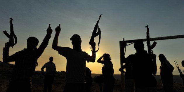 Le débat sur la déchéance de nationalité pour les djihadistes ne sert à