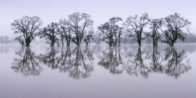 Flooded area near Santa Rosa, CA, Laguna de Santa