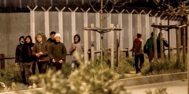 A Calais, le Royaume-Uni finance un mur végétal pour dissuader les migrants de monter dans les