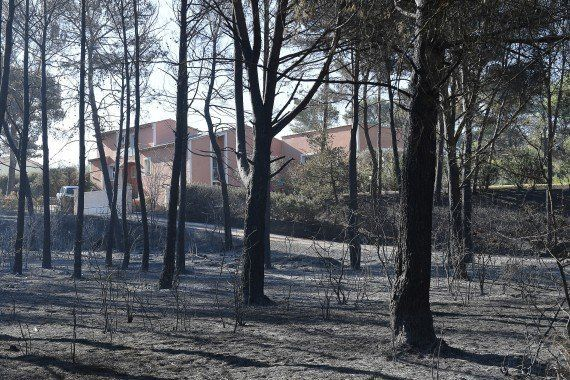 Les incendies au nord de Marseille ont brûlé 3300 hectares, 850 hectares détruits dans les