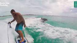 Cet amateur de wakeboard a trouvé le meilleur compagnon de