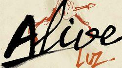 BLOG - Luz raconte ses souvenirs de concerts en