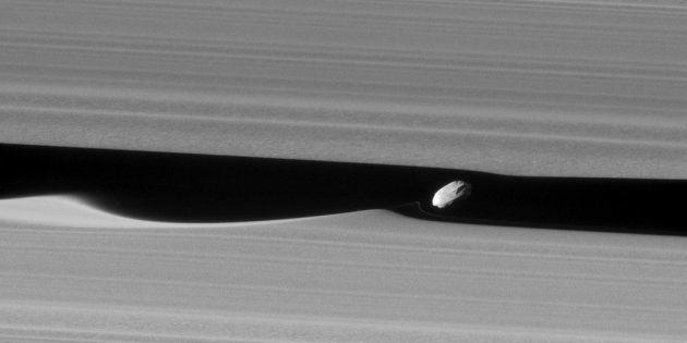 La lune Daphnis, entre les anneaux de Saturne, photographiée par