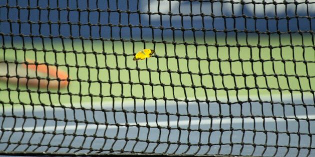 Andy Murray explose un papillon à l'US Open (mais l'insecte a été