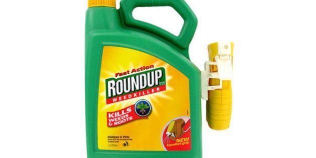Monsanto racheté pour 59 milliards d'euros par