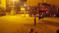 L'histoire de ce taureau mort en Espagne, dont les cornes ont été enflammées,